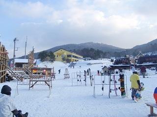 saioto20120114-1.jpg