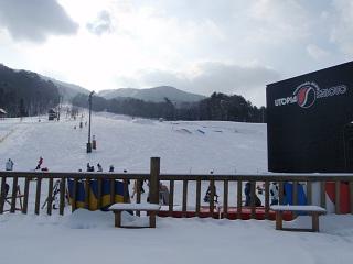 saioto20120114-3.jpg